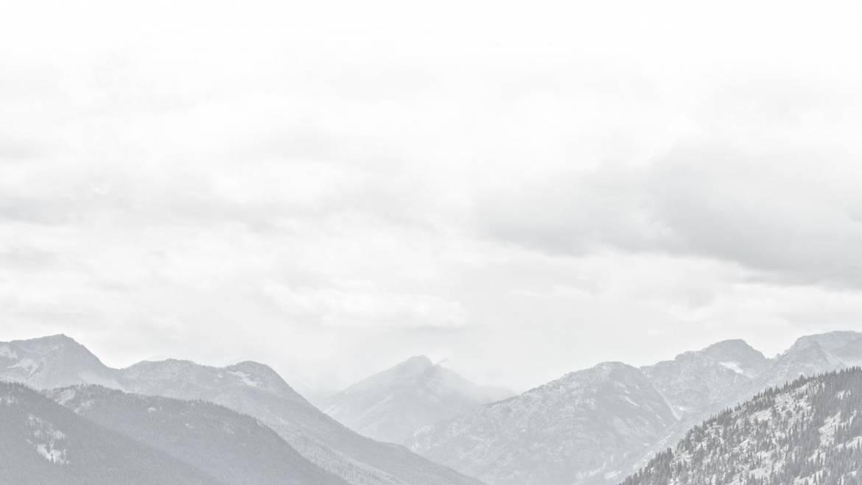 """Lanzamiento BioStartUp Segunda Generación """"Dando valor a los bosques andinos"""""""