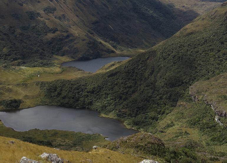 Piura -Perú