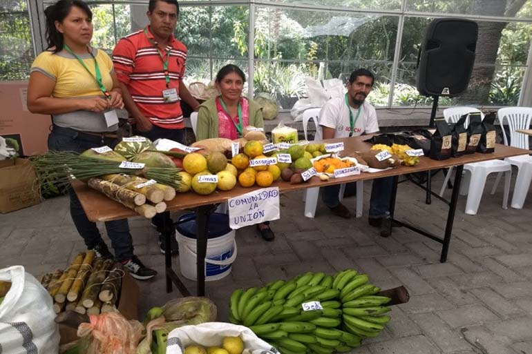 Los productos de las ACUS Mashpi y Pachijal llenan de color el Jardín Botánico de Quito
