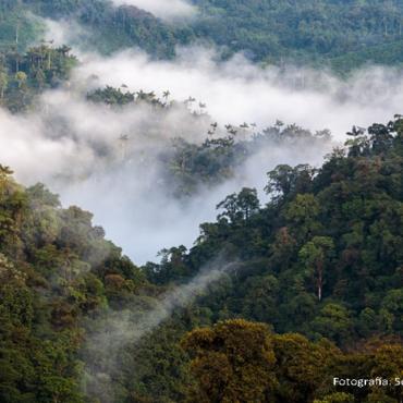 Una delegación oficial viaja a Indonesia para promover la declaratoria de Reserva de Biósfera para el Chocó Andino de Pichincha
