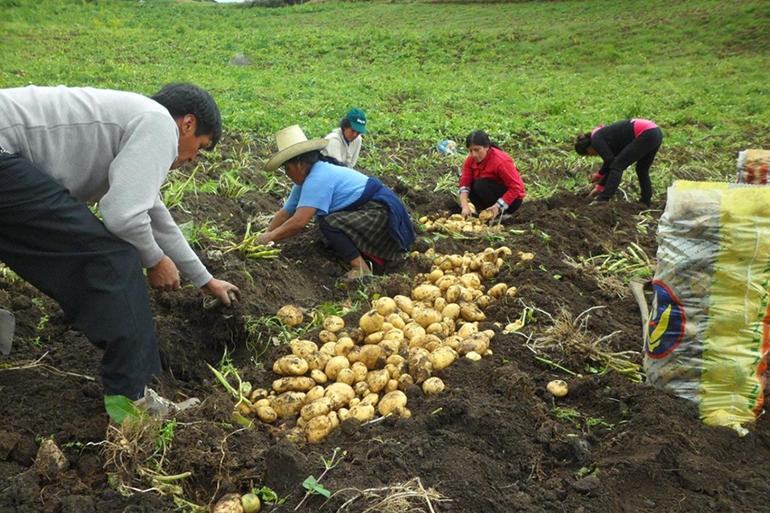 Perú da inicio a la fase de implementación del proyecto de Adaptación a los Impactos del Cambio Climático en los recursos hídricos en los Andes
