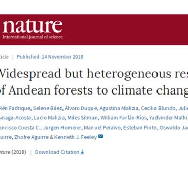 Revista Nature publica artículo colaborativo de la Red de Bosques Andinos
