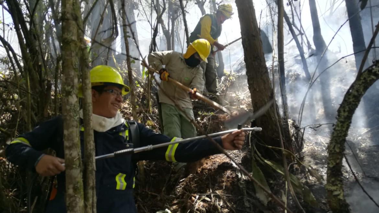 Los proyecto AICCA  y Amazonía sin Fuego colaborando con las comunidades para prevenir incendios forestales en la Cuenca del río Machángara
