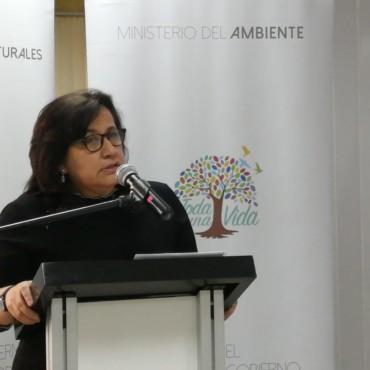 SE INAUGURA EL CURSO SOBRE DISEÑO DE POLÍTICAS PÚBLICAS EN EL CONTEXTO DEL CAMBIO CLIMÁTICO PARA EL SECTOR HIDROELÉCTRICO EN ECUADOR