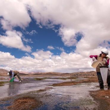 88 mujeres de 6 regiones inician hoy Programa pionero de Liderazgo de Mujeres para la Gestión del Agua