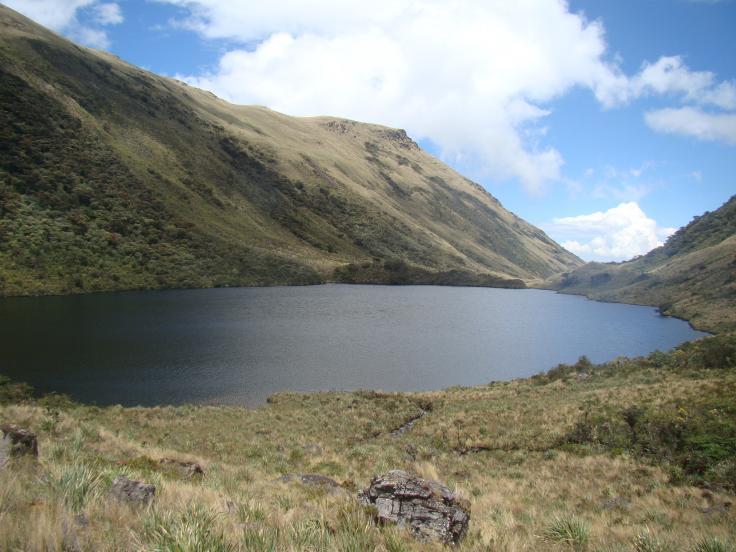 Ministerio de Agricultura y Riego del Perú promueve la conservación de los páramos en Piura