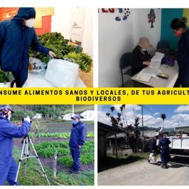 Emergencia sanitaria en la Mancomunidad del Chocó Andino: aportar y aprender