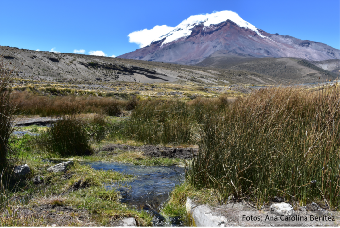 Hacia una agenda de investigación para el monitoreo integrado de los socioecosistemas andinos
