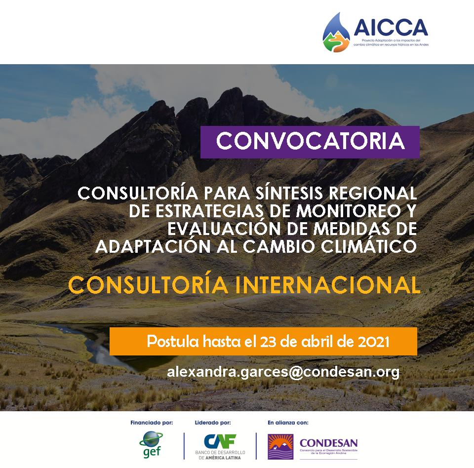 Convocatoria consultoría internacional – Estudio síntesis monitoreo