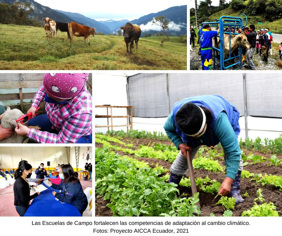 Las Escuelas de Campo son un eje central para la adaptación al cambio climático en Papallacta y Cuyuja