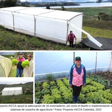 La Cosecha de Agua abre oportunidades a mujeres productoras de la cuenca del Lago de Tota
