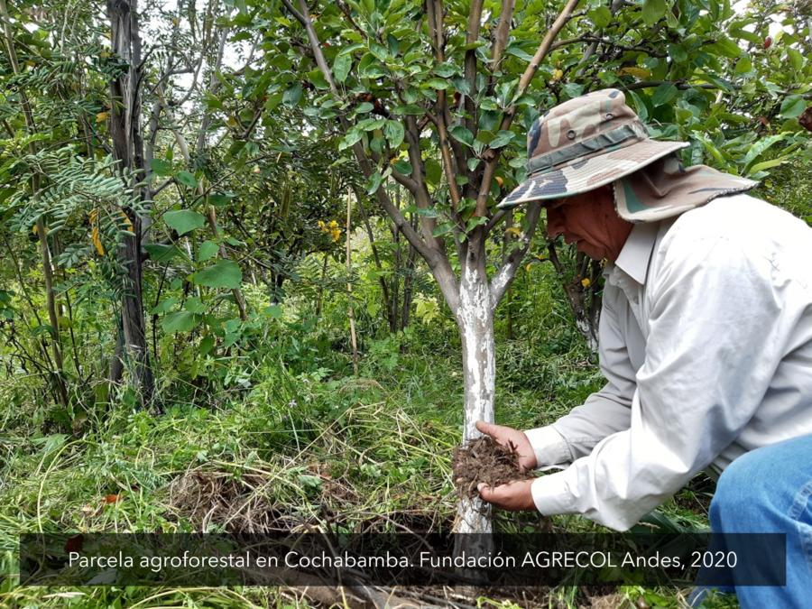AICCA Bolivia promueve la agroforestería en el Parque Nacional Tunari