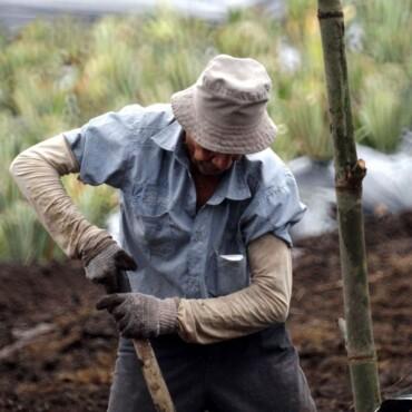 Se difunde metodología y resultados de la actualización de análisis de riesgos climáticos en el sector agrario en Perú